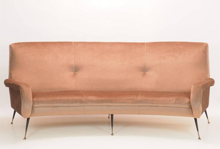 Mid-Century Modern Italian Curved Sofa by Gigi Radice for Minotti, Milano, 1950s For Sale