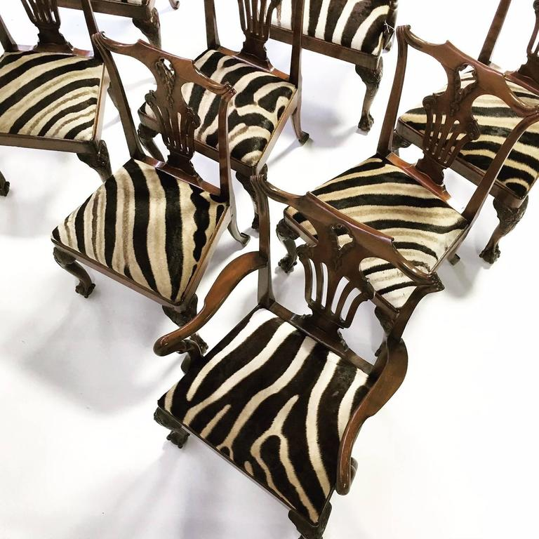 18th Century and Earlier 18th Century George II Walnut Dining Chairs in Zebra Hide, Set of Eight For Sale