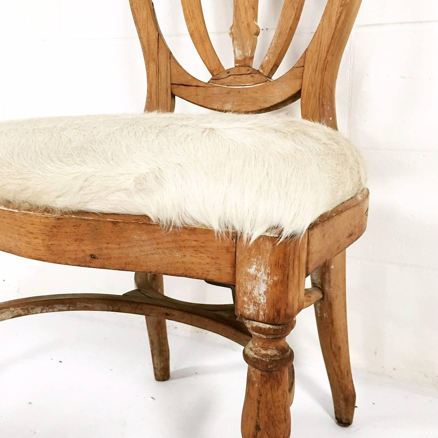 vintage maple dining chairs in brazilian ivory cowhide set of six for