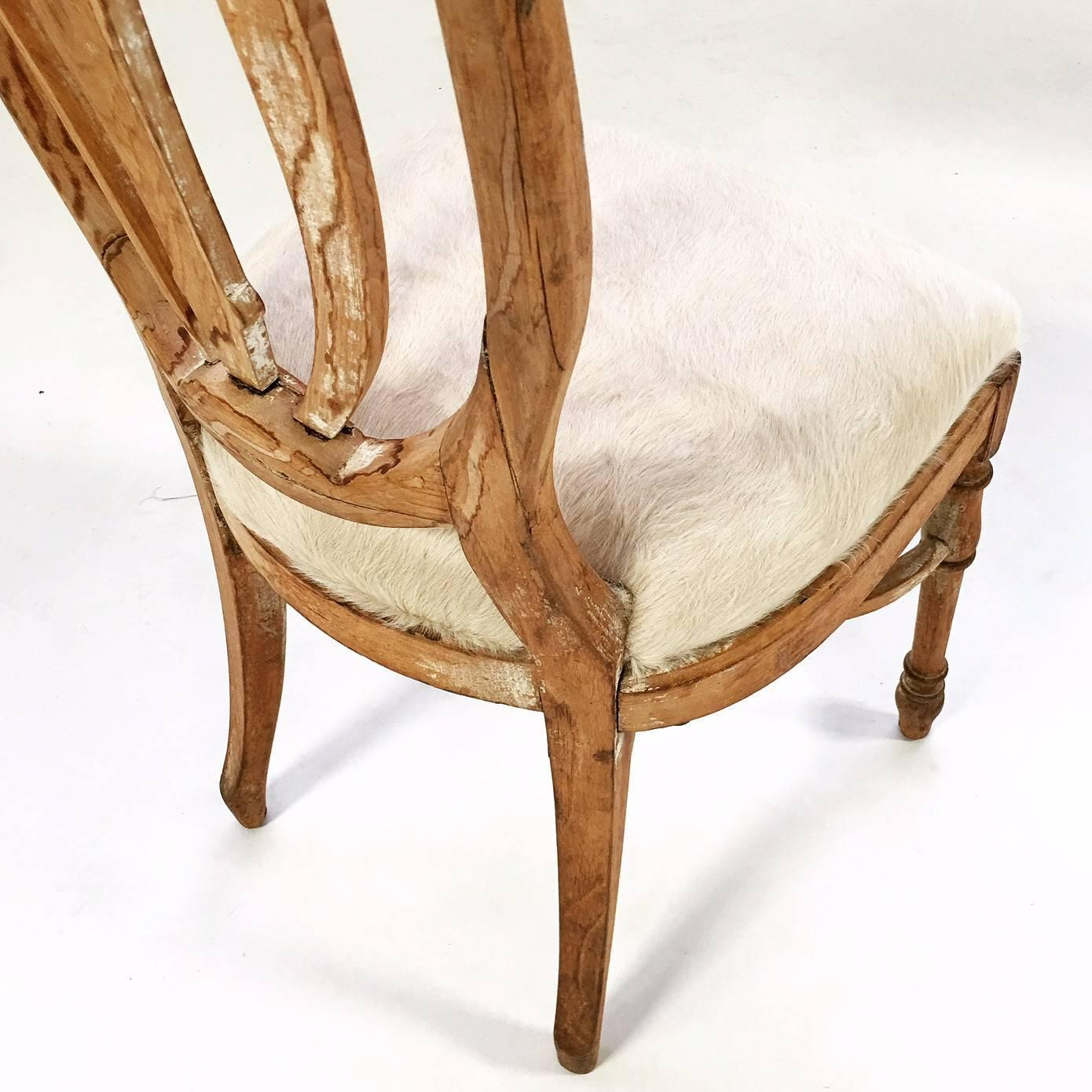 Vintage Maple Dining Chairs in Brazilian Ivory Cowhide