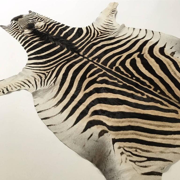 Zebra Hide Rug At 1stdibs