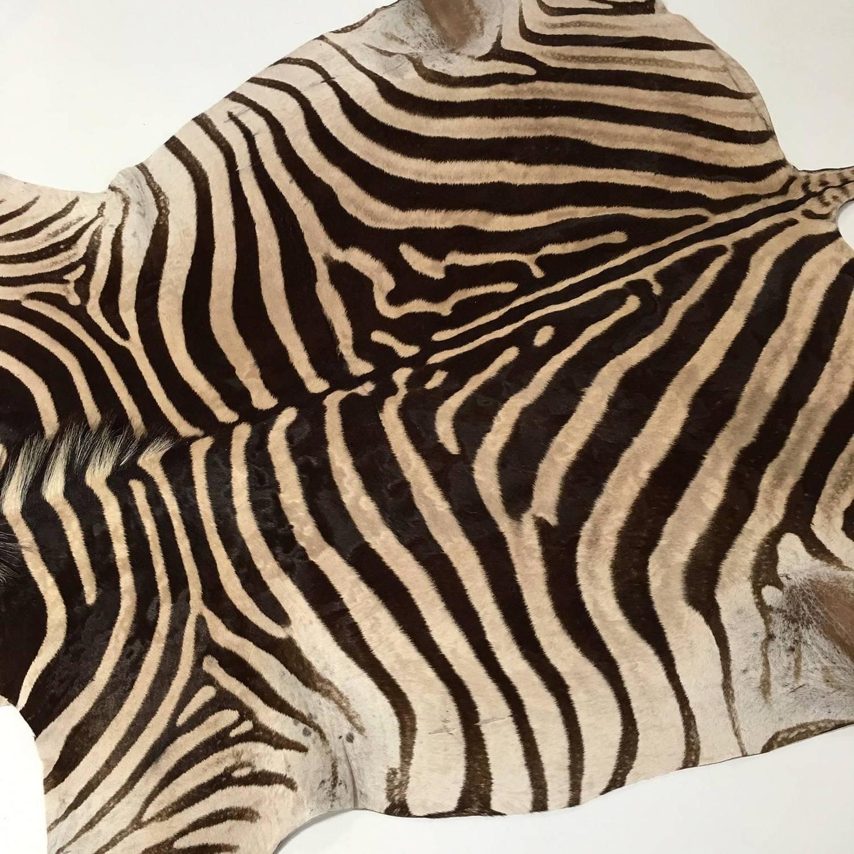 Zebra Sculpture Area Rug: Zebra Hide Rug At 1stdibs