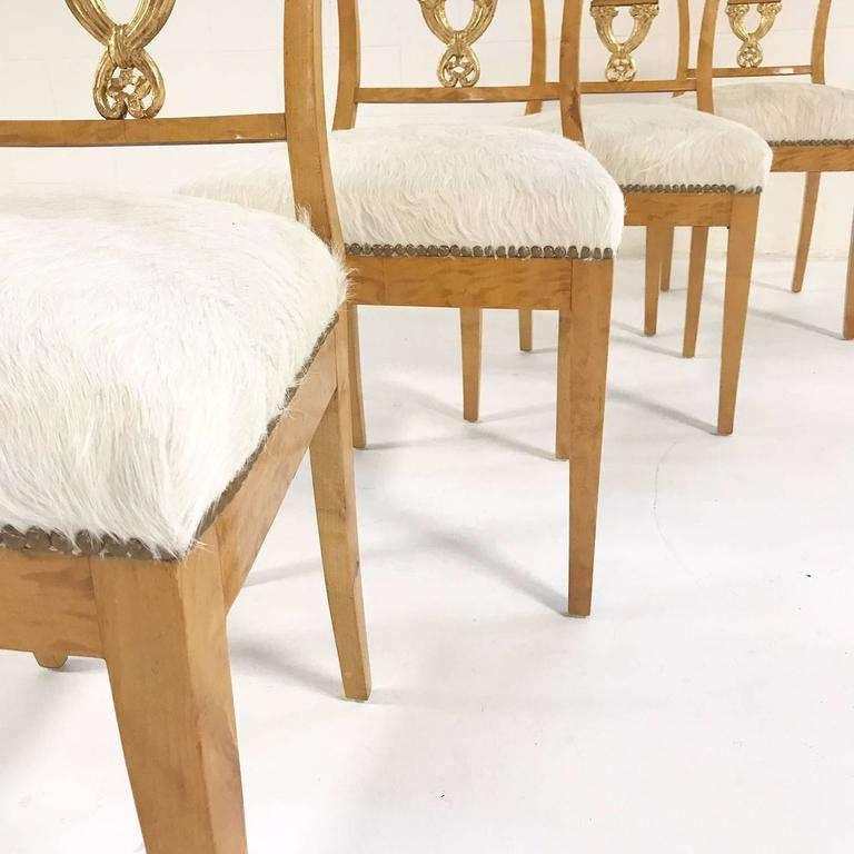 Early 19th Century Set of Four Satin Birch Biedermeier Chairs in Ivory Brazilian Cowhide circa 1820 For Sale