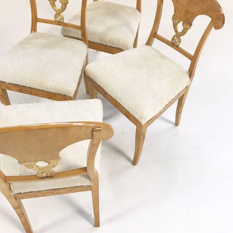 Set of Four Satin Birch Biedermeier Chairs in Ivory Brazilian Cowhide circa 1820 For Sale 2