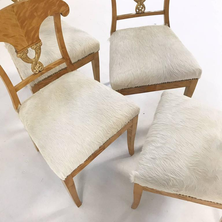 Set of Four Satin Birch Biedermeier Chairs in Ivory Brazilian Cowhide circa 1820 For Sale 4