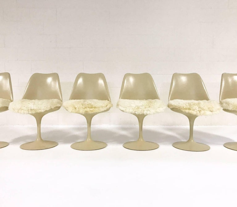 Eero saarinen tulip chairs with custom brazilian sheepskin for Custom dining room chair cushions
