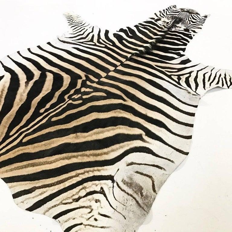 Zebra Hide Rug 4