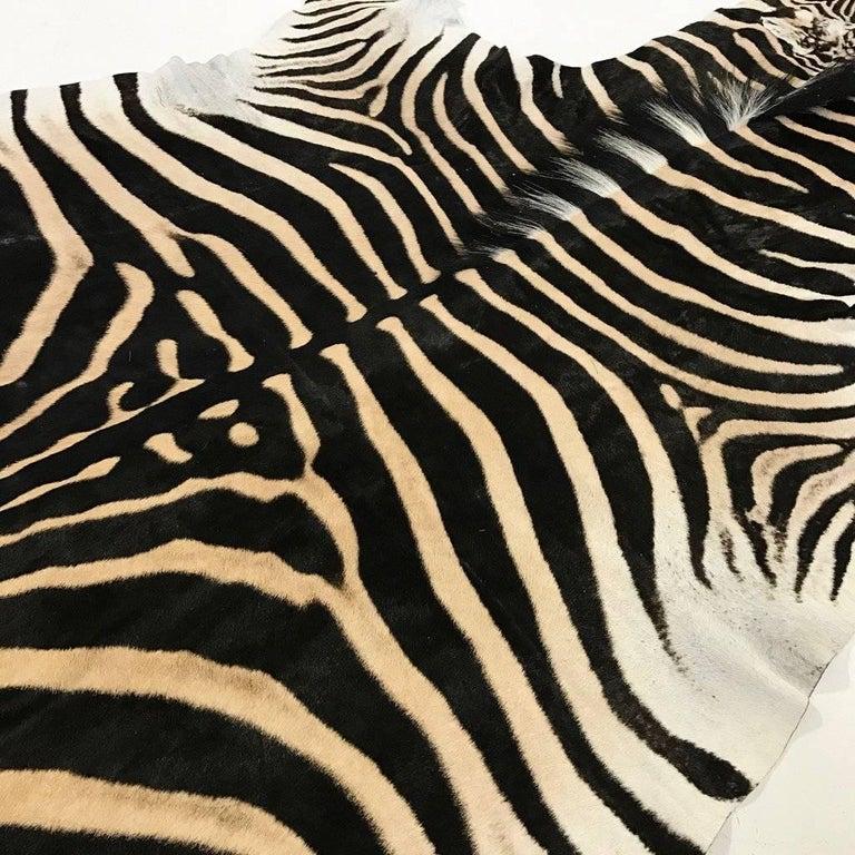 Zebra Hide Rug 3