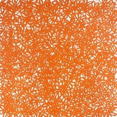 John O'Hara, Daisies, Orange