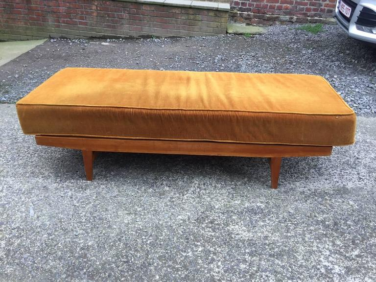 1950s daybed in pine, seat and cushion covered with velvet.