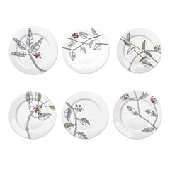 Set of Six Bacche Dinner Plates