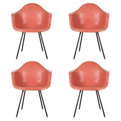 Eames Salmon Dax Dining Chair for Herman Miller, 1958