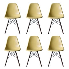 Set of Six Eames Ochre Light DSW Herman Miller, USA Dining Chairs