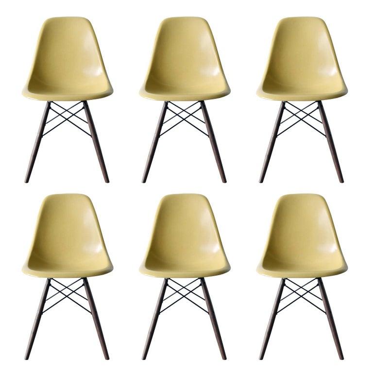 Set of Six Eames Ochre Light DSW Herman Miller, USA Dining Chairs