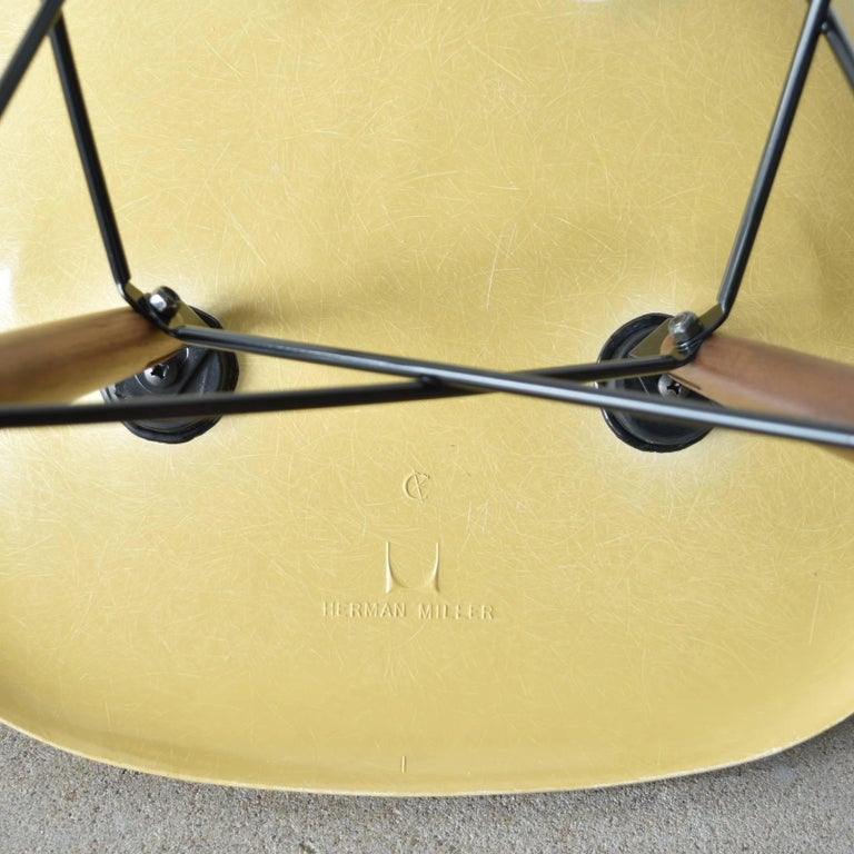 Molded Set of Six Eames Ochre Light DSW Herman Miller, USA Dining Chairs