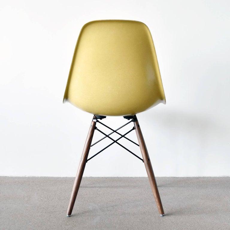 Mid-Century Modern Set of Six Eames Ochre Light DSW Herman Miller, USA Dining Chairs