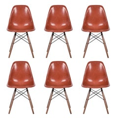 Set of Six Eames Terra Cotta DSW Herman Miller, USA Dining Chairs