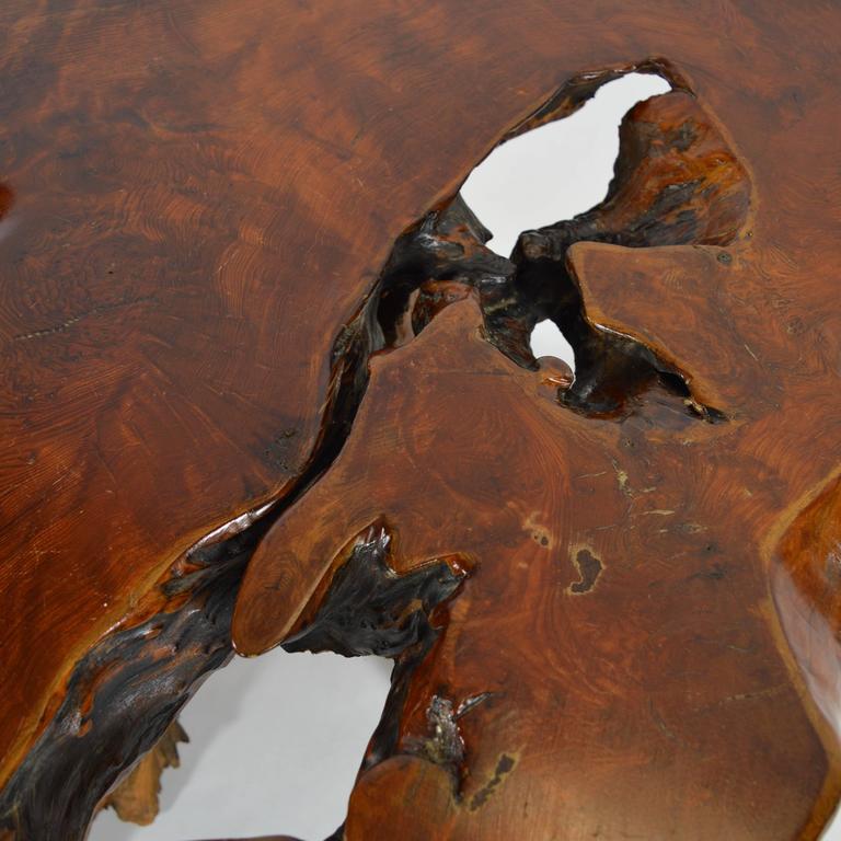 Redwood Tree Coffee Table: Californian Redwood Burl Coffee Table At 1stdibs