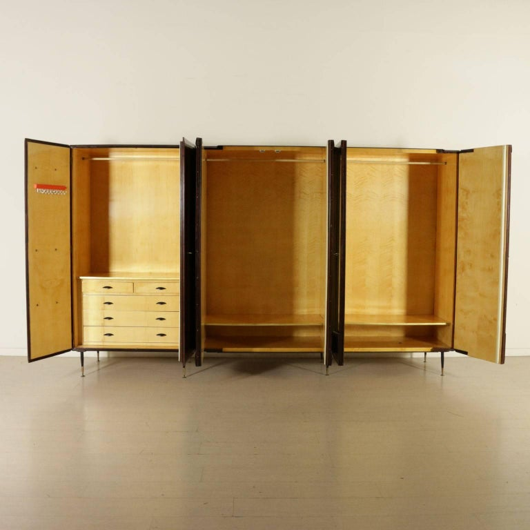 Mid-Century Modern Wardrobe Rosewood Veneer Mirrors Decorative Wood Vintage, 1950s-1960s For Sale