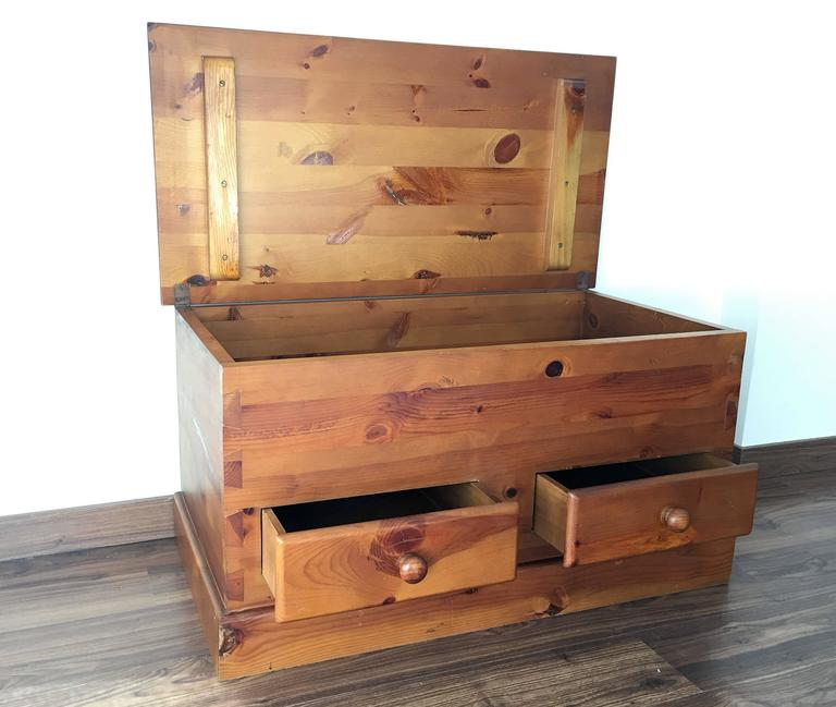 20th Century Trunk for Storage 2