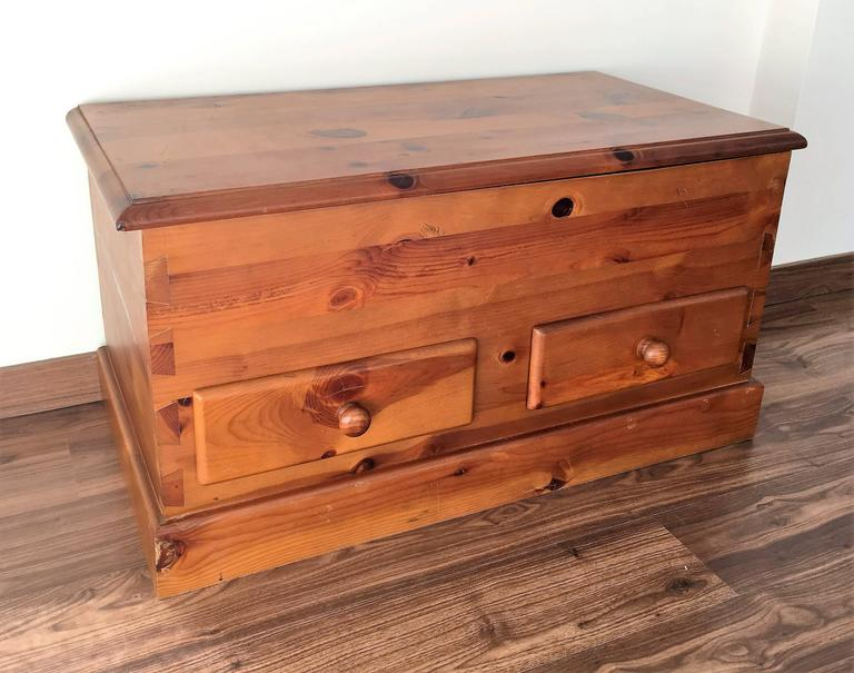 20th Century Trunk for Storage 3