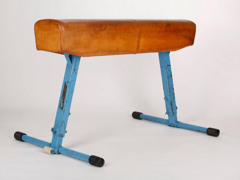 Manufactured by Artis in the 1960s in former Czechoslovakia. Height adjustable construction made of original blue painted steel tubing. The cleaned and preserved thick cowhide has a patina.
