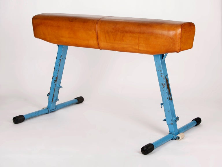 Sporting Art Gym Leather Horse from Artis, 1960s For Sale