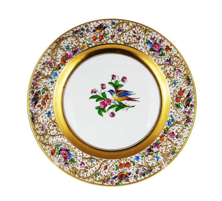 items similar to 12 dinner plates birds ornithological antique dresden