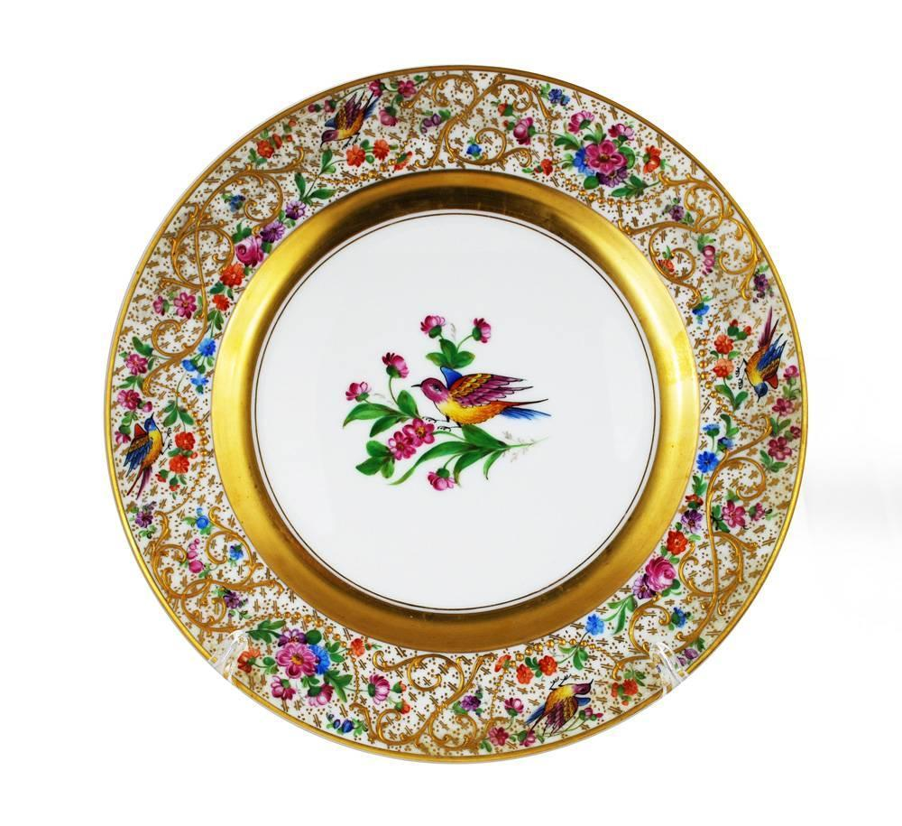 dresden ambrosius lamm 12 dinner plates set bird ornithological
