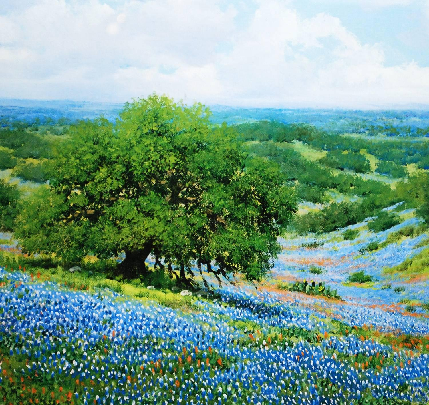 Set of four landscape prints of texas seasons bluebonnets winter slaughter for sale at 1stdibs