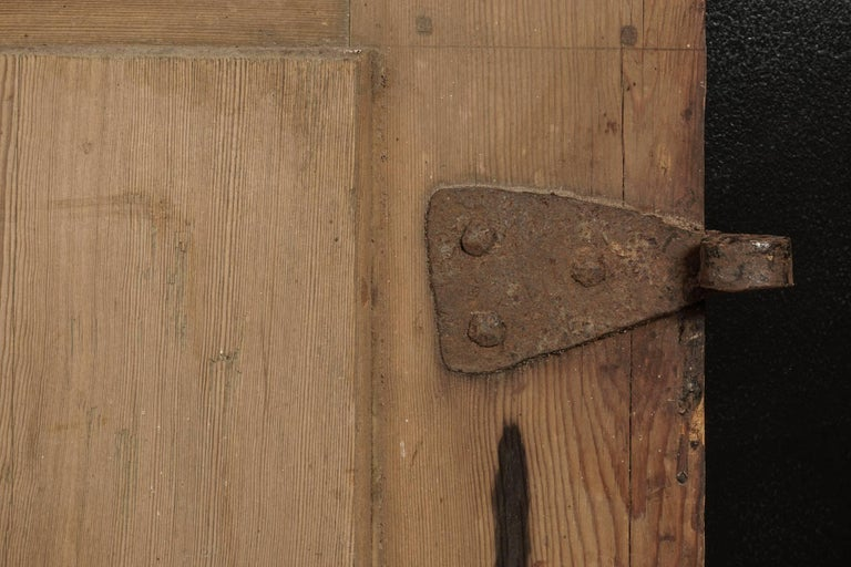 Pair of Primitive Doors from Sweden, circa 1820 For Sale 2