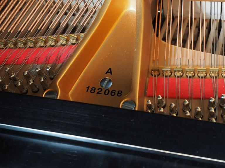 1917 Steinway Baby Grand Piano Model A 10