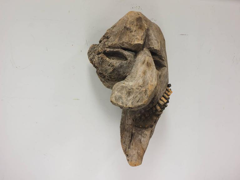 20th Century Primitive Carved Tree Fern Wood Mask For Sale