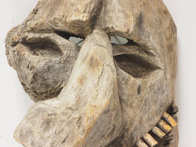 Primitive Carved Tree Fern Wood Mask For Sale 4
