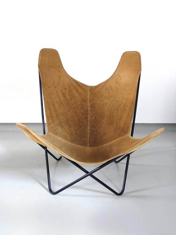 Butterfly Chair By Jorge Ferrari Hardoy For Knoll 2