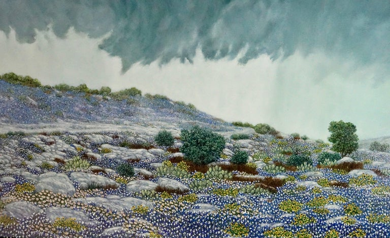 This amazing oil painting portrays a rain wrapped storm breaking out over a blue bonnet climax in the Texas hill country. The shaded landscape is rendered perfectly to accentuate the effect and atmosphere of the impending storm. The fine detail and