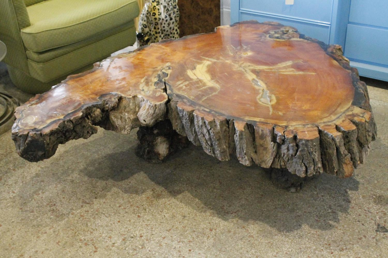 Cypress Tree Trunk Coffee Or Cocktail Table For Sale At 1stdibs