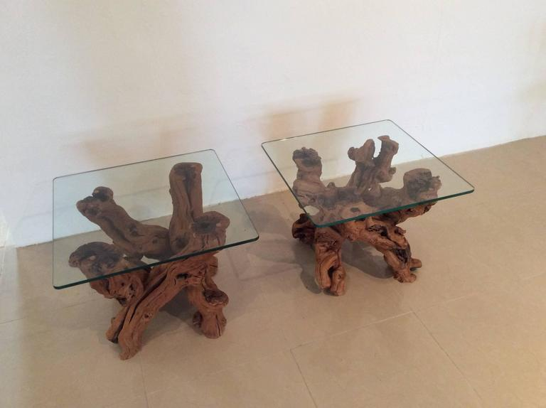 Amazing Hollywood Regency, Vintage Pair Of Cypress Tree Root, Driftwood End  Side Tables With