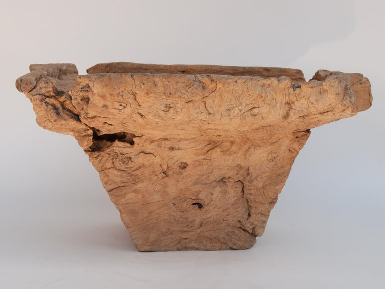 Old Eroded Teak Burlwood Mortar with Handle, North Thailand, Mid-20th Century For Sale 2
