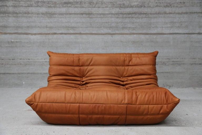 loveseat togo by michel ducaroy for ligne roset in full. Black Bedroom Furniture Sets. Home Design Ideas