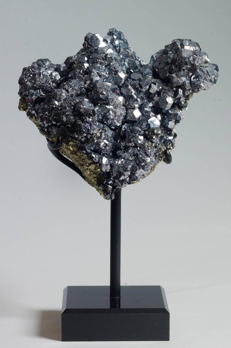 Galena crystals over pyrite. Measures: 24 x 15 x 9 with stand.