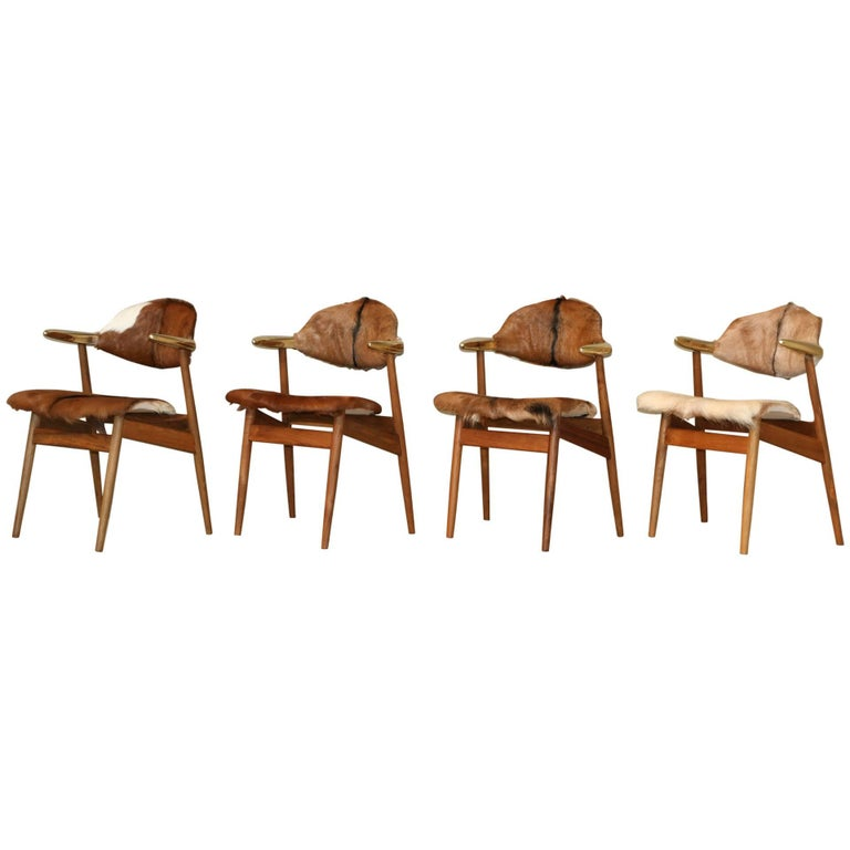 Four Goat Fur Upholstered Vintage Cow Horn Chairs, Holland, 1950s Brass Horns