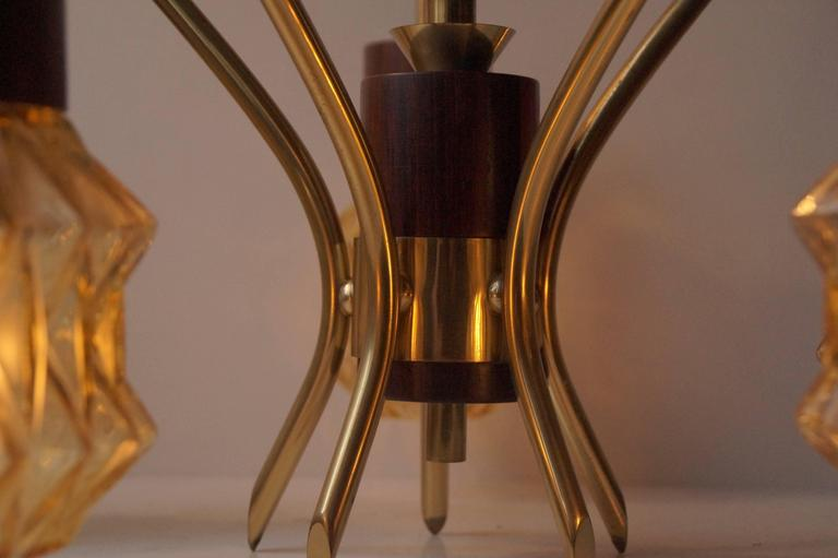 Mid-20th Century Mid-Century Danish Rosewood, Brass and Glass Spider Chandelier, 1950s For Sale