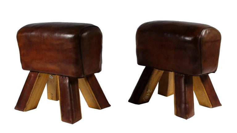 Pair of Leather Gym Stools 2