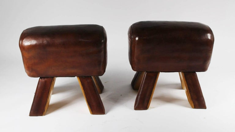 Pair of Leather Gym Stools 3