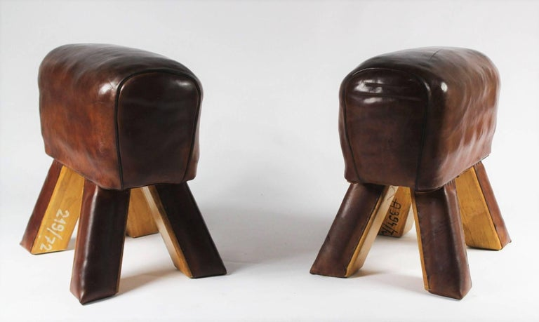 Pair of Leather Gym Stools 4