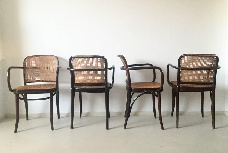 Exceptional Josef Hoffman, Bentwood And Cane U0027u0027Pragueu0027u0027 Chairs, ...