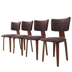 Mid-Century Dining Chairs by Cor Alons for den Boer Gouda, 1949