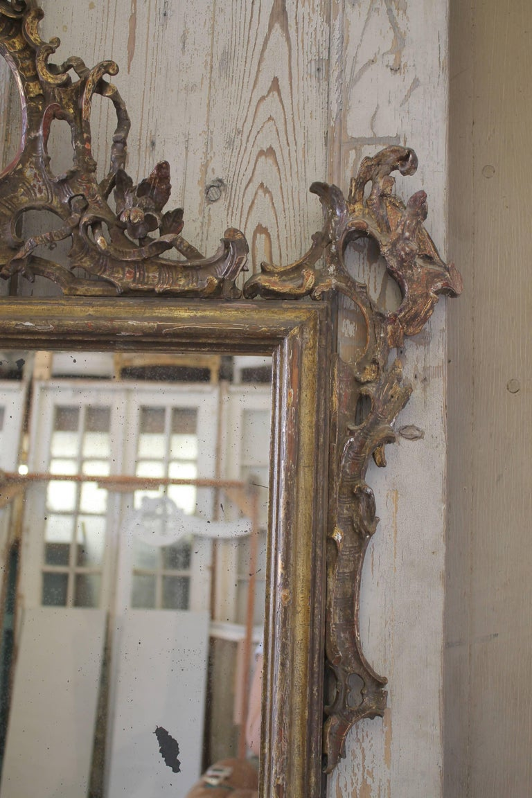 17th Century Carved And Gilded French Country Mirror For