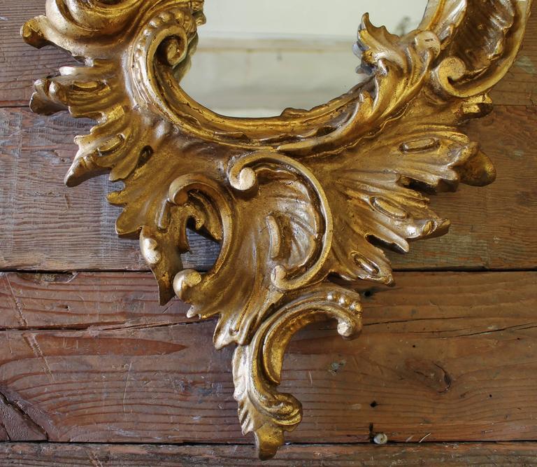 Pair of 19th Century Gilt Rococo Mirrors 1